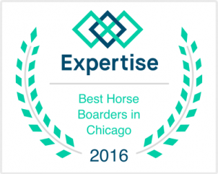 Named 1 of the best Horse Boarders in Chicago for 2016!